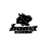 logo_boostmobile